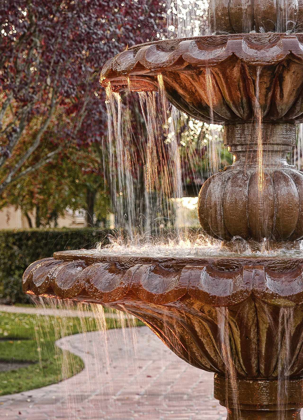 Courtyard fountain Back Yard Courtyard  Decorative Flowing Water Fountain Grass No People Ornate Design Outdoors Pathway Patio Sculpted Splashing Water Trees Vertical Composition Water