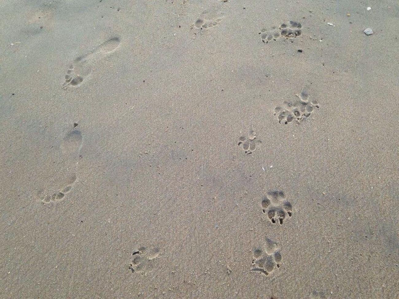 Always by my side. Bffs Love My Dog  Dogs Allowed OBX14
