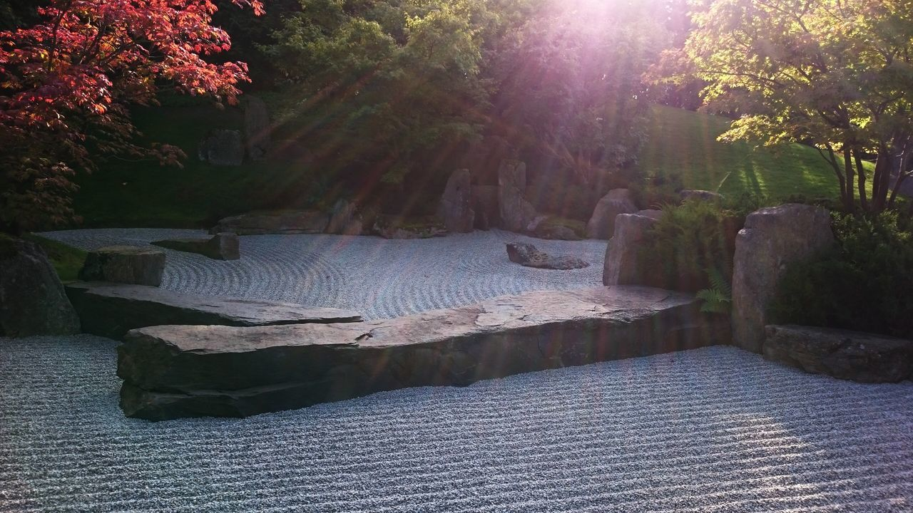 Beautiful stock photos of spa, Berlin, Buddhism, Day, Formal Garden
