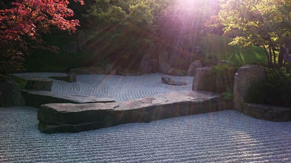 Beautiful stock photos of spa, Berlin, Buddhism, Day, Formal Garden