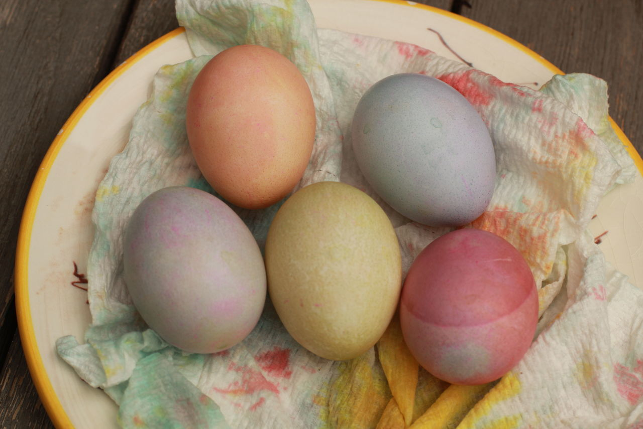 colored Easter eggs in soft colors on plate with a paper towel up close Christianity Close-up Crafts Culture And Tradition Day Directly Above Diy Project Easter Easter Egg Eastern Europe Egg Egg Carton Food Food And Drink Fragility Freshness Healthy Eating High Angle View Holiday Indoors  No People Paper Towel Poland Is Beautiful Traditional Visual Feast