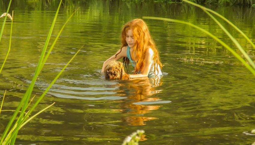 Sister Irkutsk Animal Themes Day Dog Lake Leisure Activity Long Hair Longhair Nature One Person Outdoors People Redhead Swimming Water