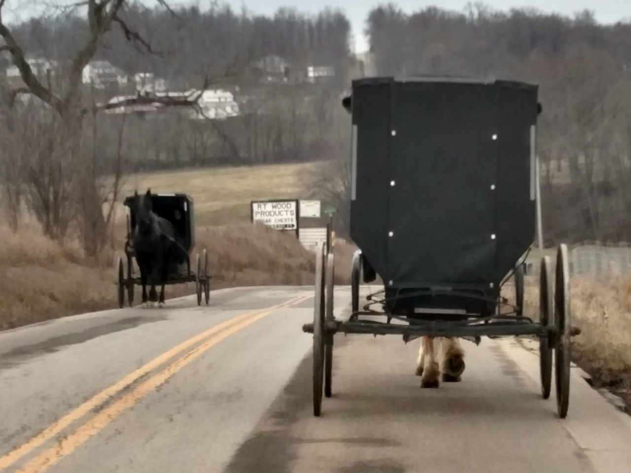 Girls Day Out! Amish Country Horse Drawn Carriage Things I Saw Today From My Point Of View The Purist (no Edit, No Filter) Sugarcreek Ohio, USA Working Animal Working Horse Amish Buggy Vintage Technology Old School The Tourist Ladyphotographerofthemonth Showcase: February