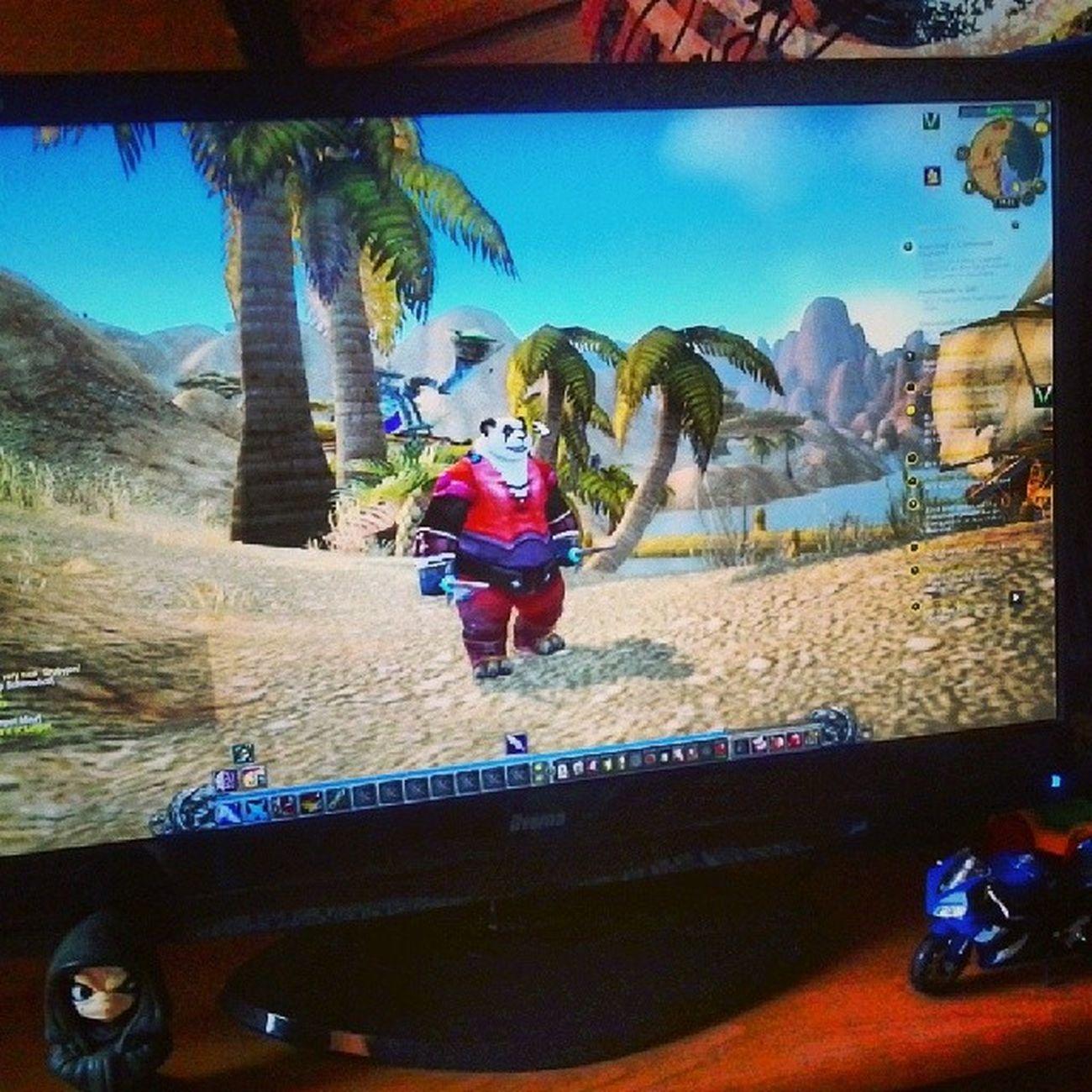 World Of Warcraft Worldofwarcraft mists of pandaria pandaren rogue 20 lvl powoli expimy horde only poland