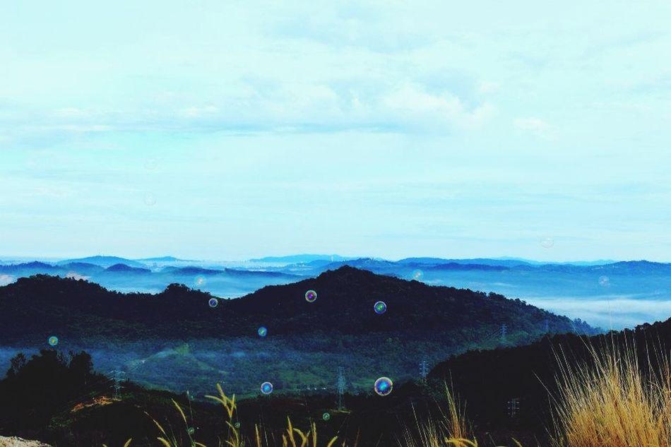 Beautiful stock photos of australia, Australia, Beauty In Nature, Day, Fog