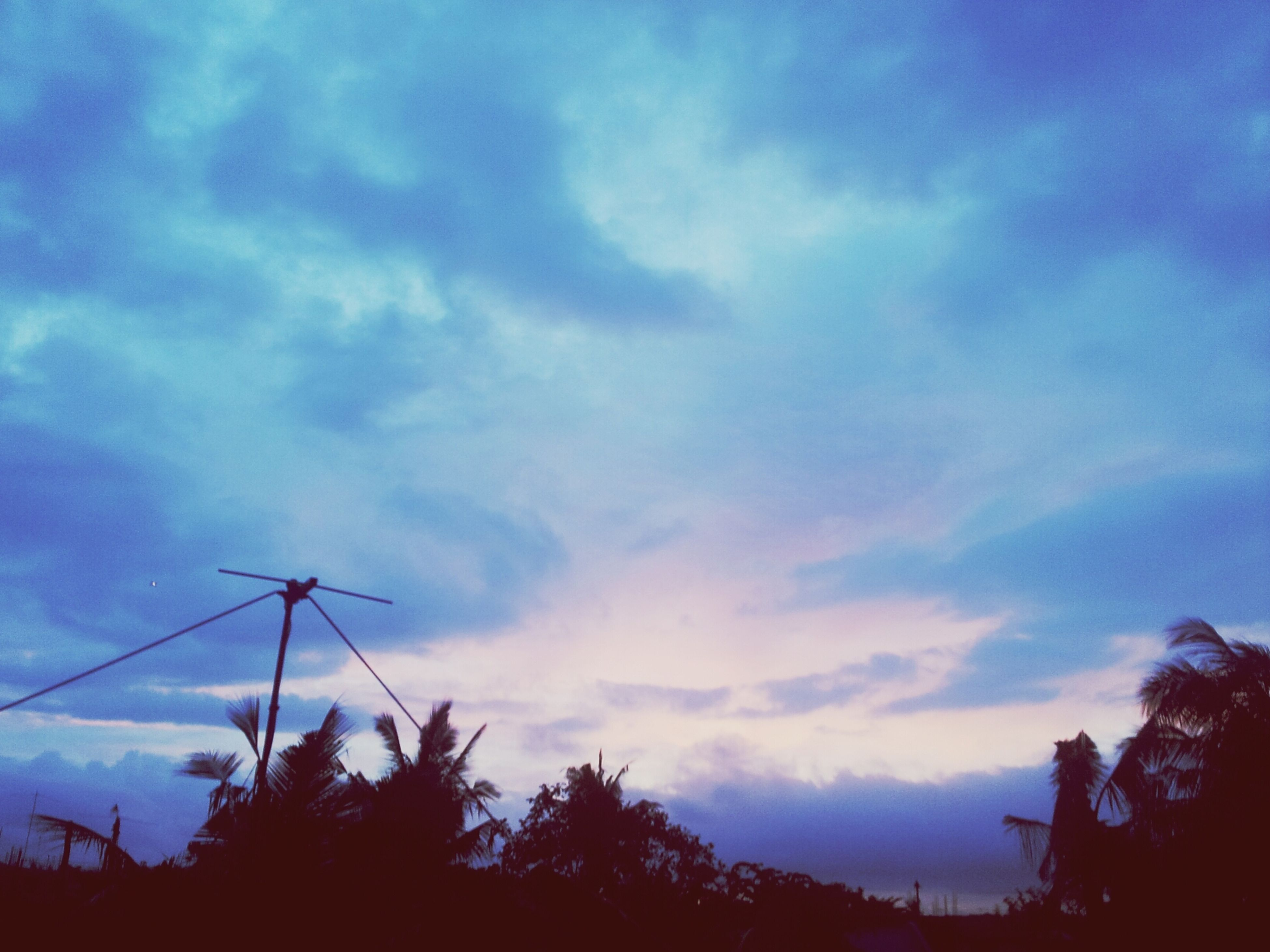 silhouette, sky, tree, low angle view, cloud - sky, tranquility, beauty in nature, nature, cloud, sunset, cloudy, tranquil scene, dusk, scenics, growth, blue, outdoors, no people, power line, high section