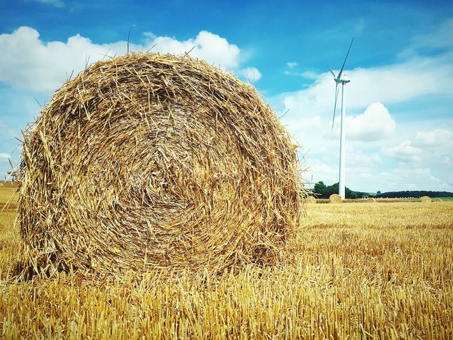 This Is Perspective day 18. Hay Bales Straw Fields Wind Turbine Perspective Cloudy Skies Bold Colours Landsape