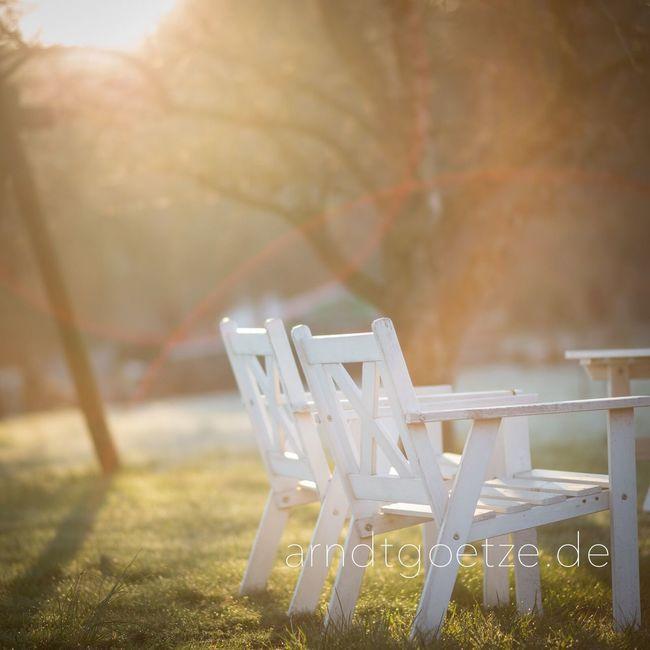 Goodmorning Odenwald  Sunrise Garden Spring Earlybird Nofilter