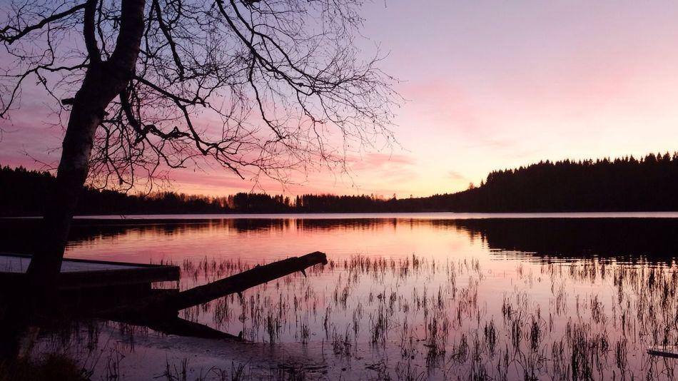 Autumn sunset at the lake Autumn Sunset Lake Sognsvann