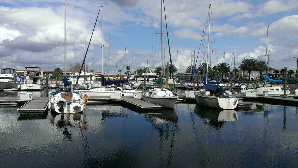 Lake Monroe, Florida Florida HTC EVO 4g Lte Androidography Enjoying The View