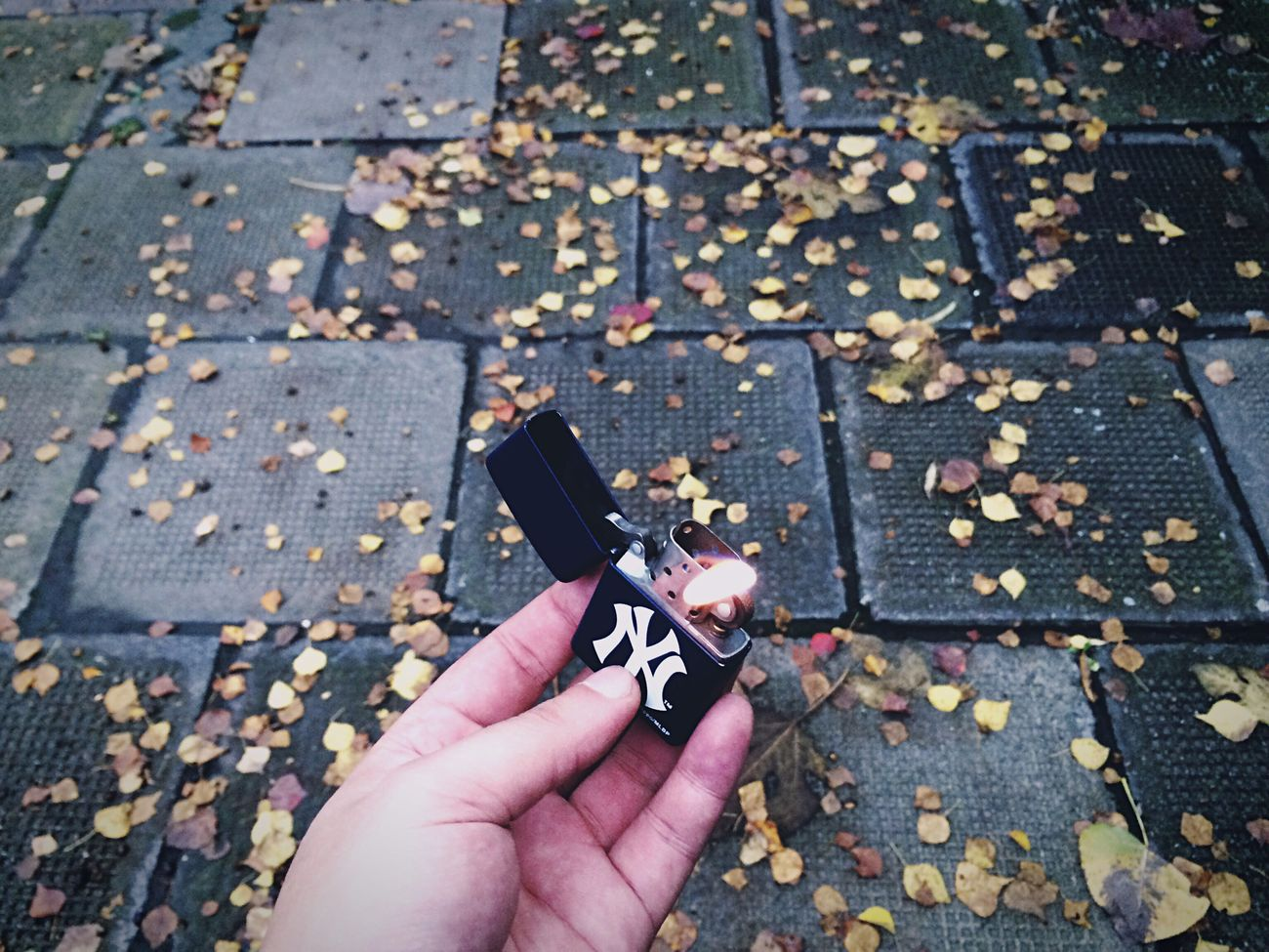 On The Road IPhoneography Leaves Autumn Leaves Fall Leaves Leaf 🍂 City Cityscapes Streetphotography Fire