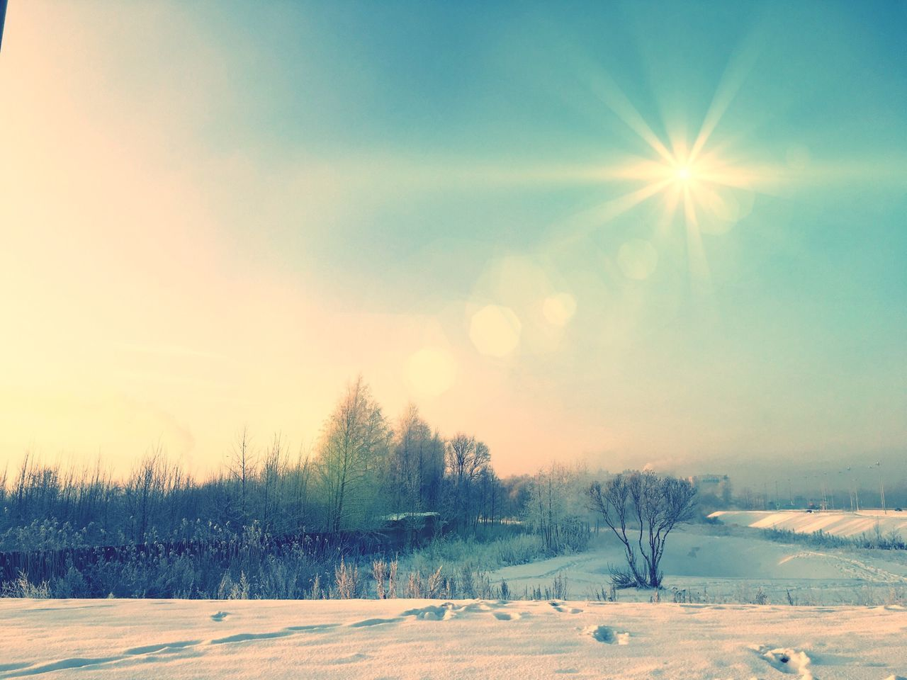 snow, cold temperature, winter, lens flare, nature, sun, weather, sunlight, beauty in nature, sunbeam, tranquility, tree, field, tranquil scene, scenics, outdoors, landscape, frozen, no people, sky, day