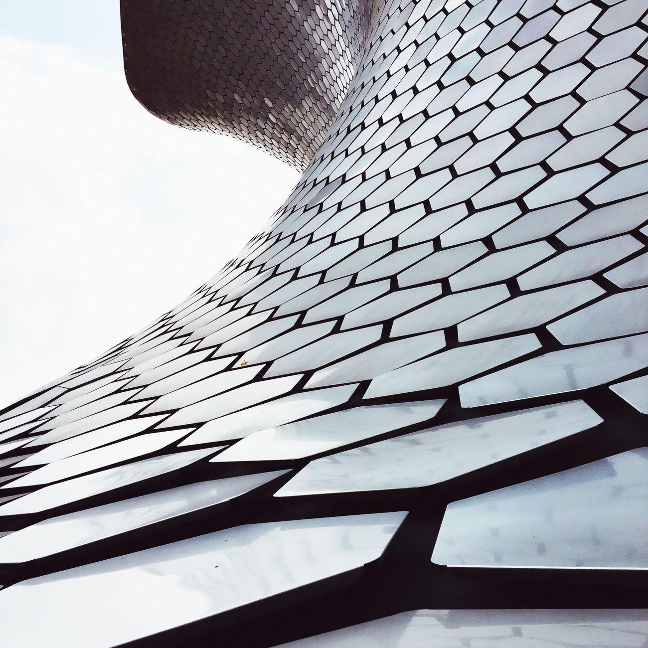 The Architect - 2016 EyeEm Awards Architecture Museum Mexico