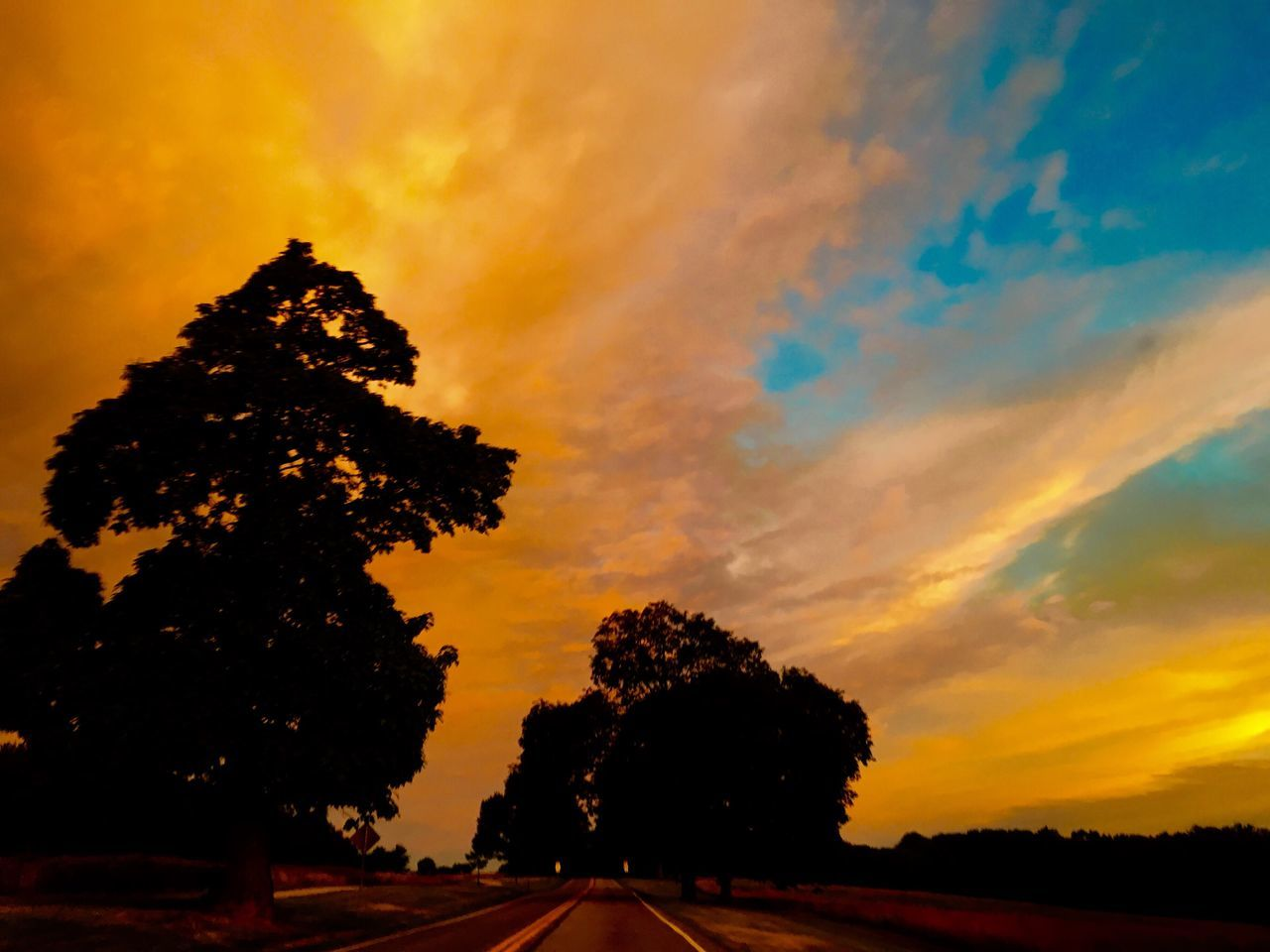 tree, sunset, silhouette, nature, sky, road, scenics, tranquility, no people, cloud - sky, beauty in nature, tranquil scene, the way forward, outdoors, landscape, day