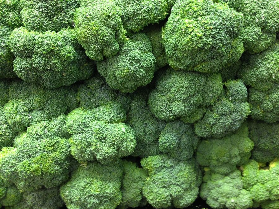 Backgrounds Broccoli Broccolisprouts Close-up Day Food Freshness Full Frame Green Color Nature No People Outdoors Vegetable