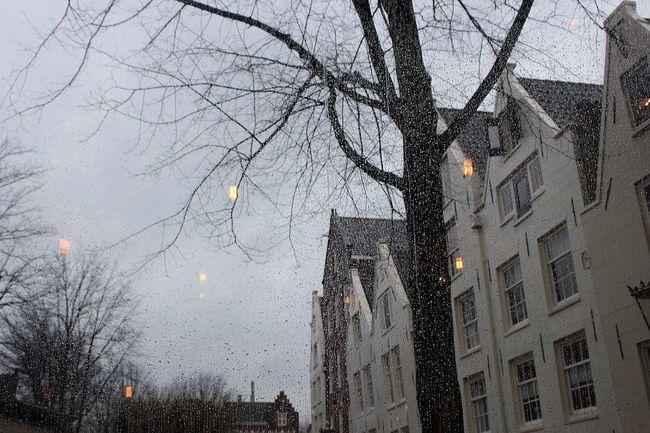 Rainy Days Rain Raindrops Cute Sad Sadness Winter Netherlands Beautiful Cafe