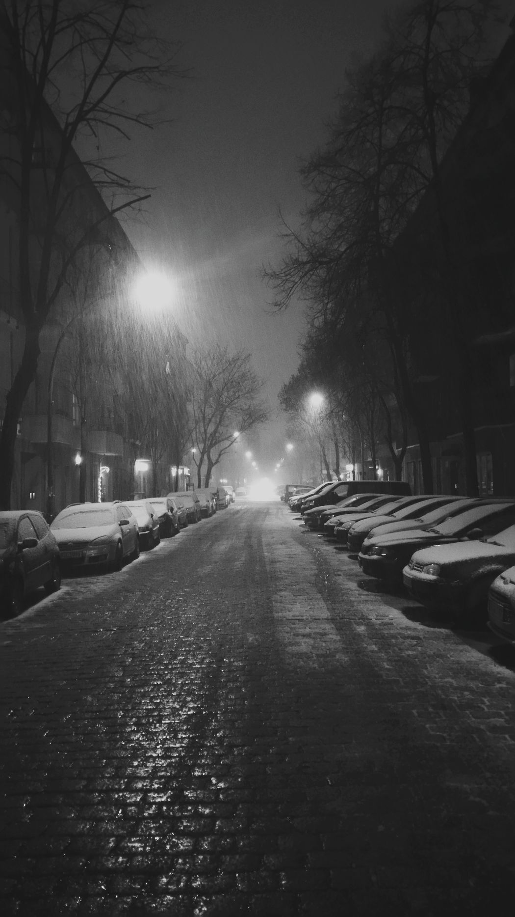 all I ask is you The Week On Eyem Firstsnow Snow Berlin Winter Love Byebyeautomne Street Streetphoto_bw Lonely City Night Darkness Blackandwhite Black & White Black Mystery Photography Streetphotography Street Photography Cold Light