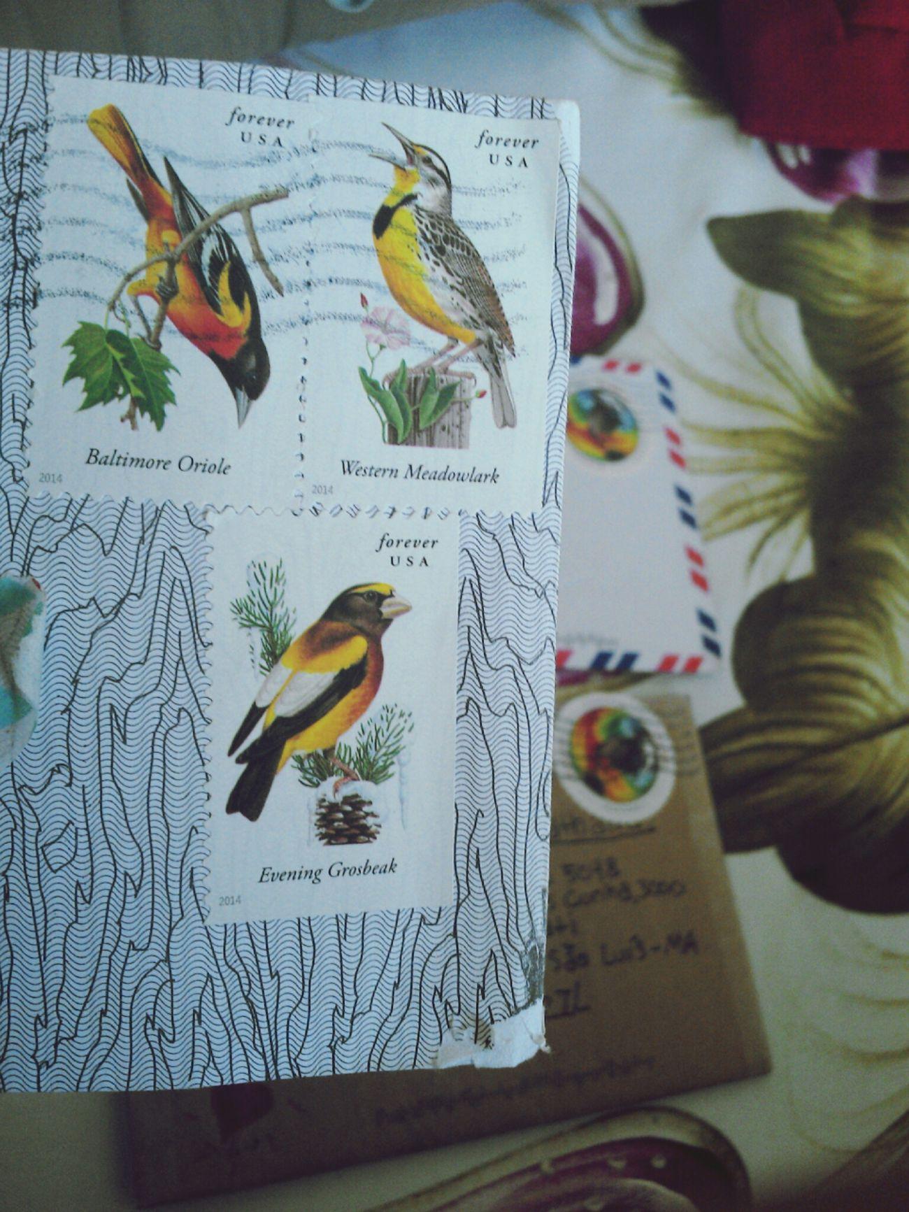 Letters Snail Mail Penpals Stamps
