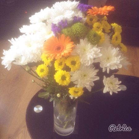 My lovely gift Taking Photo Flower Flowers Pretty Friends Happy Colourful 🌸