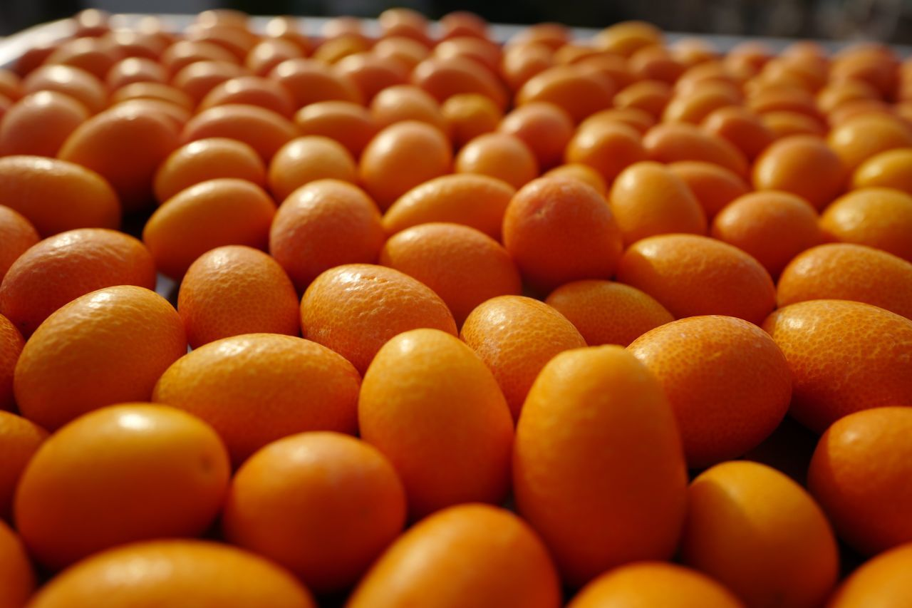 orange color, food and drink, abundance, healthy eating, large group of objects, food, freshness, indoors, selective focus, no people, close-up, day