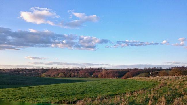 Spring Landscape Landscape Photography Landscape Landschaften Gras  Feld Ackerman Acker