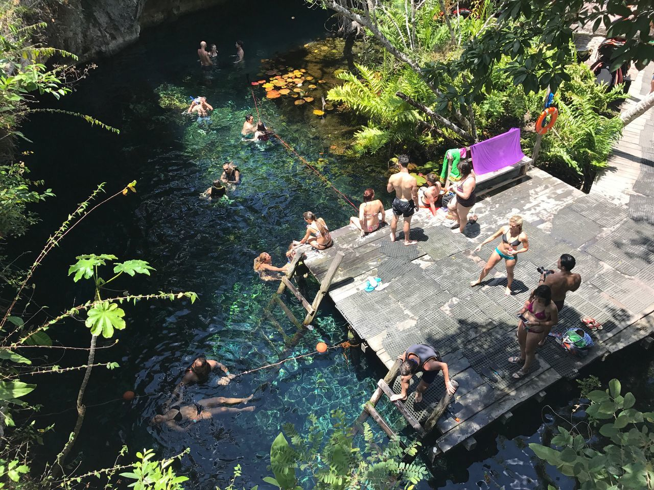 high angle view, large group of people, day, men, outdoors, real people, plant, women, tree, leaf, togetherness, water, nature, adult, people