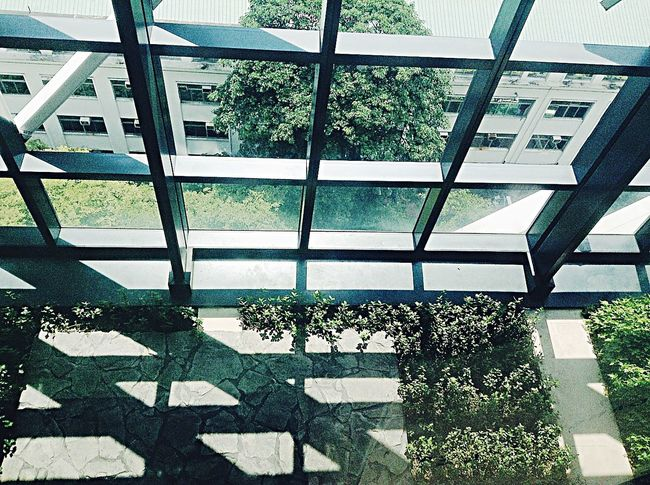 De La Salle University Henry Sy Sr. Hall Library View Photo Of The Day Free Time