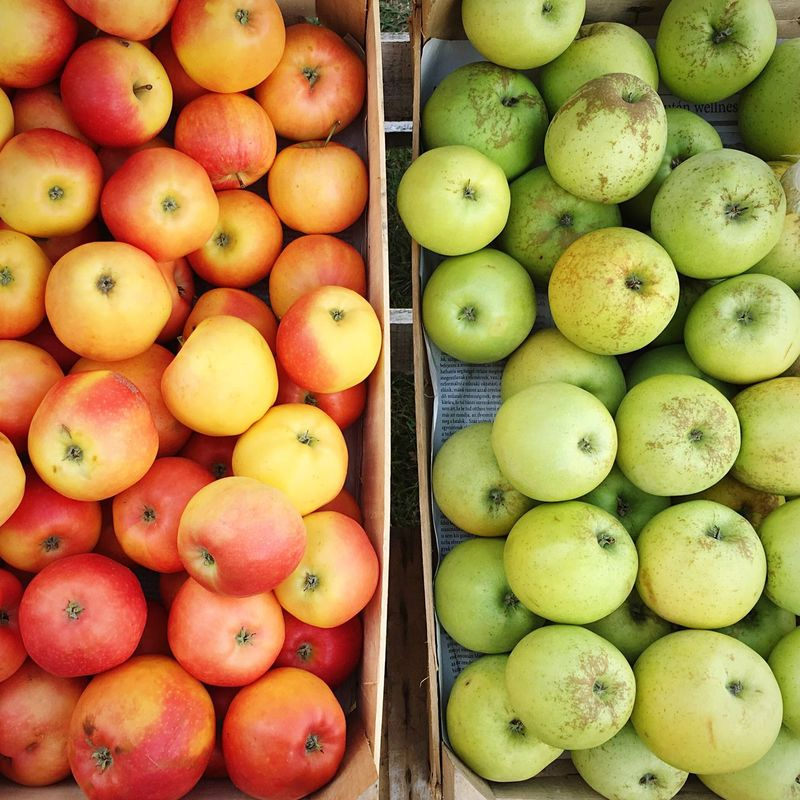 Straight From The Farm Apples Red Apples Green Apples  Freshness Fruit Healthy Eating Abundance Food Choice Variation Retail Display Arrangement Farm Garden