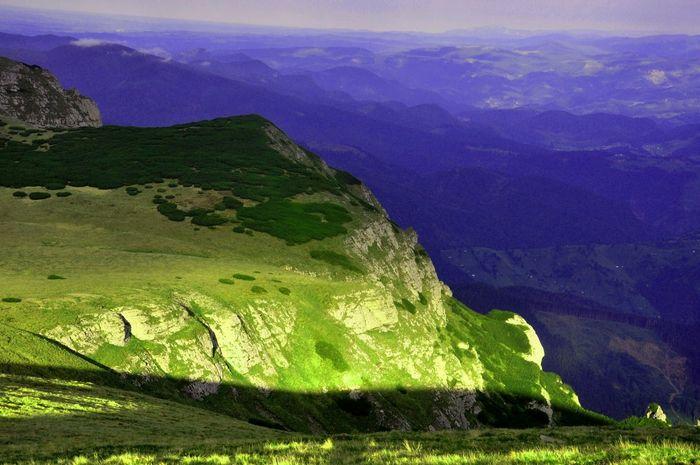 Mountain View Beautiful Nature Landscape_Collection Naturephotography Pinus Mugo Landscape_photography