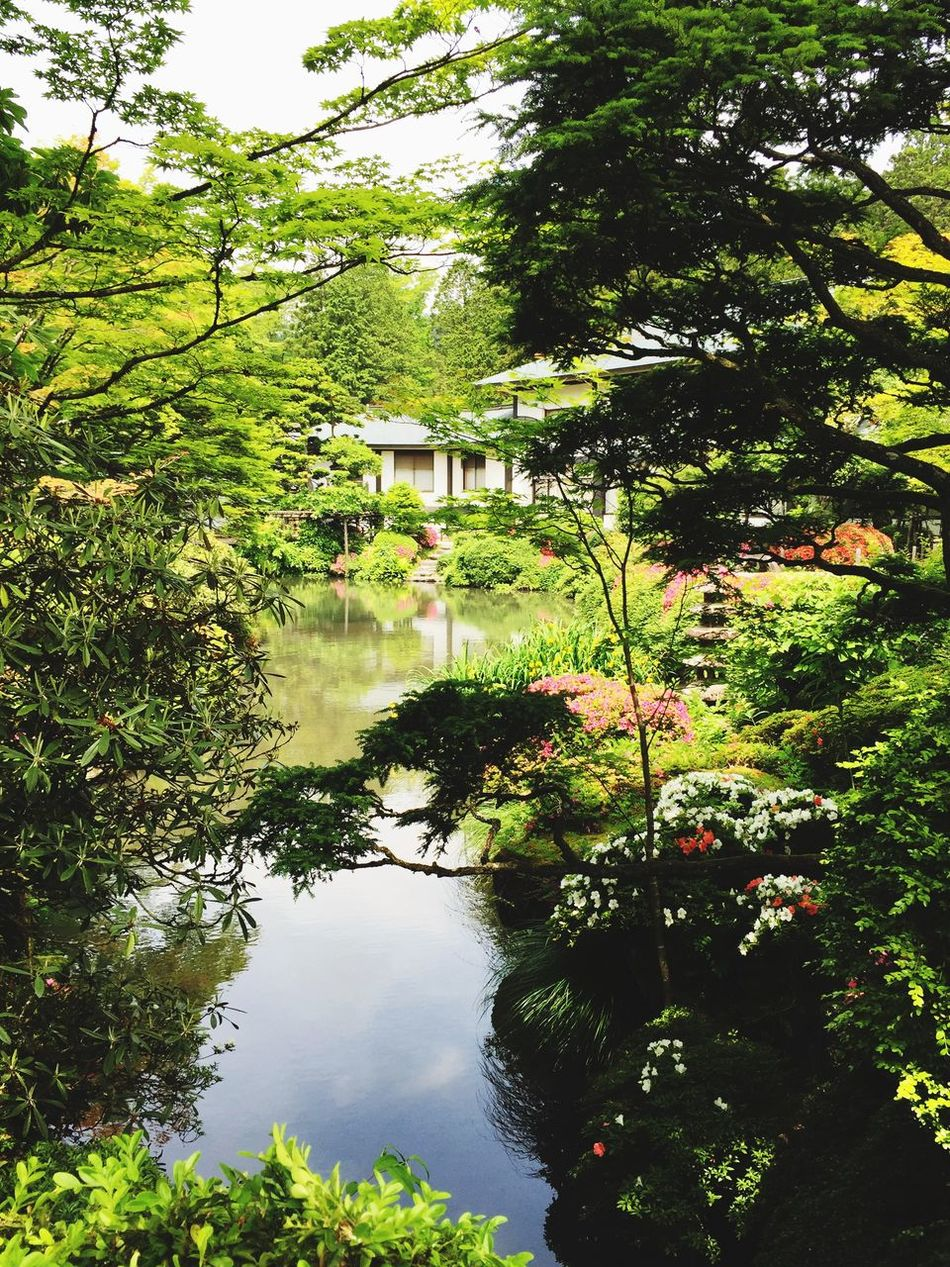 Japanese Garden Nikko Japanese Style Tochigi Japan