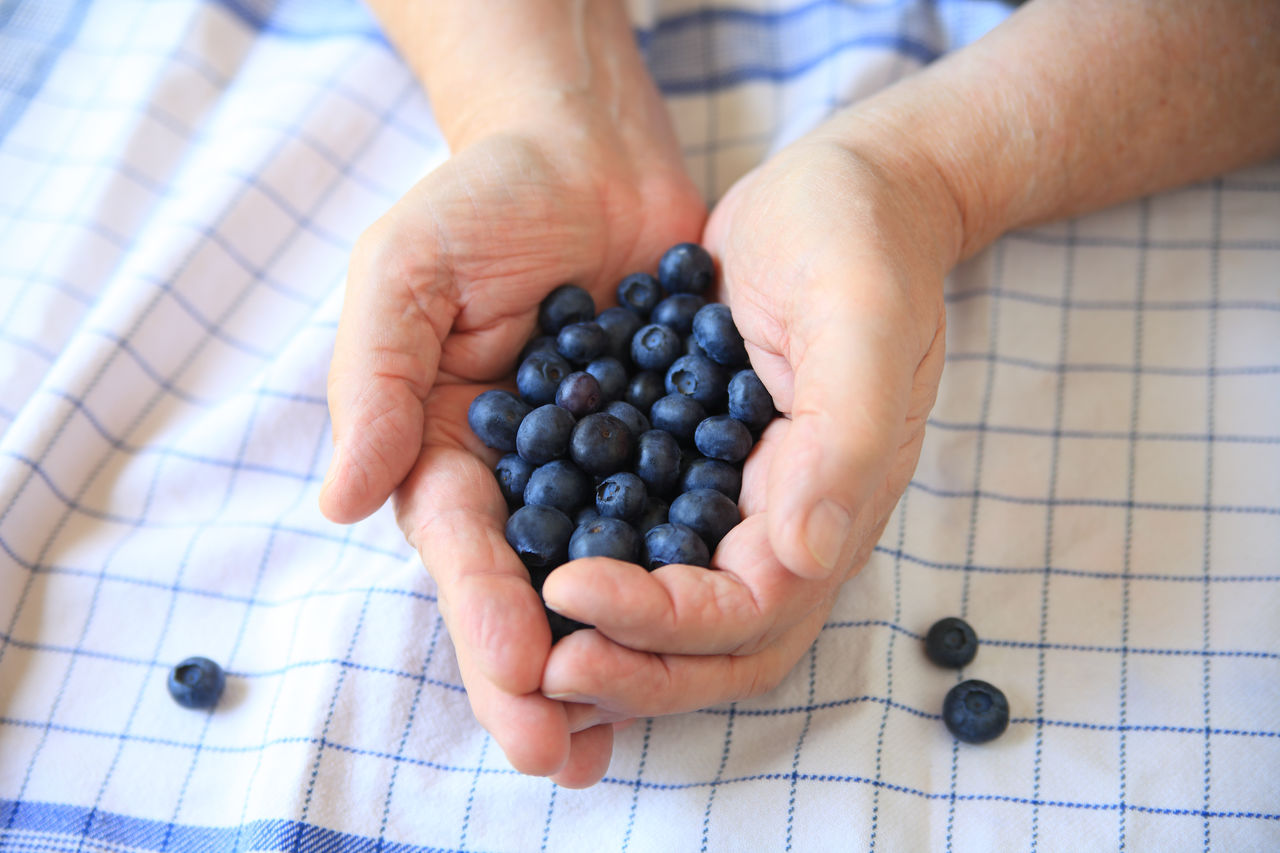 Man with blueberries over dish towel Antioxidants Blueberries Close-up Cupped Hands Dark Blue Dish Towel Fingers Food Ingredient Fresh Fruit Hands Healthy Eating Holding Indoors  Man Natural Light One Person Overhead Pattern Snack Superfood Textures