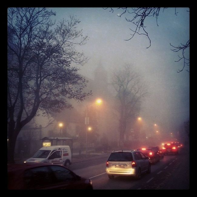 Fog November Morning Cars traffic on the way from kindergarden to the office...
