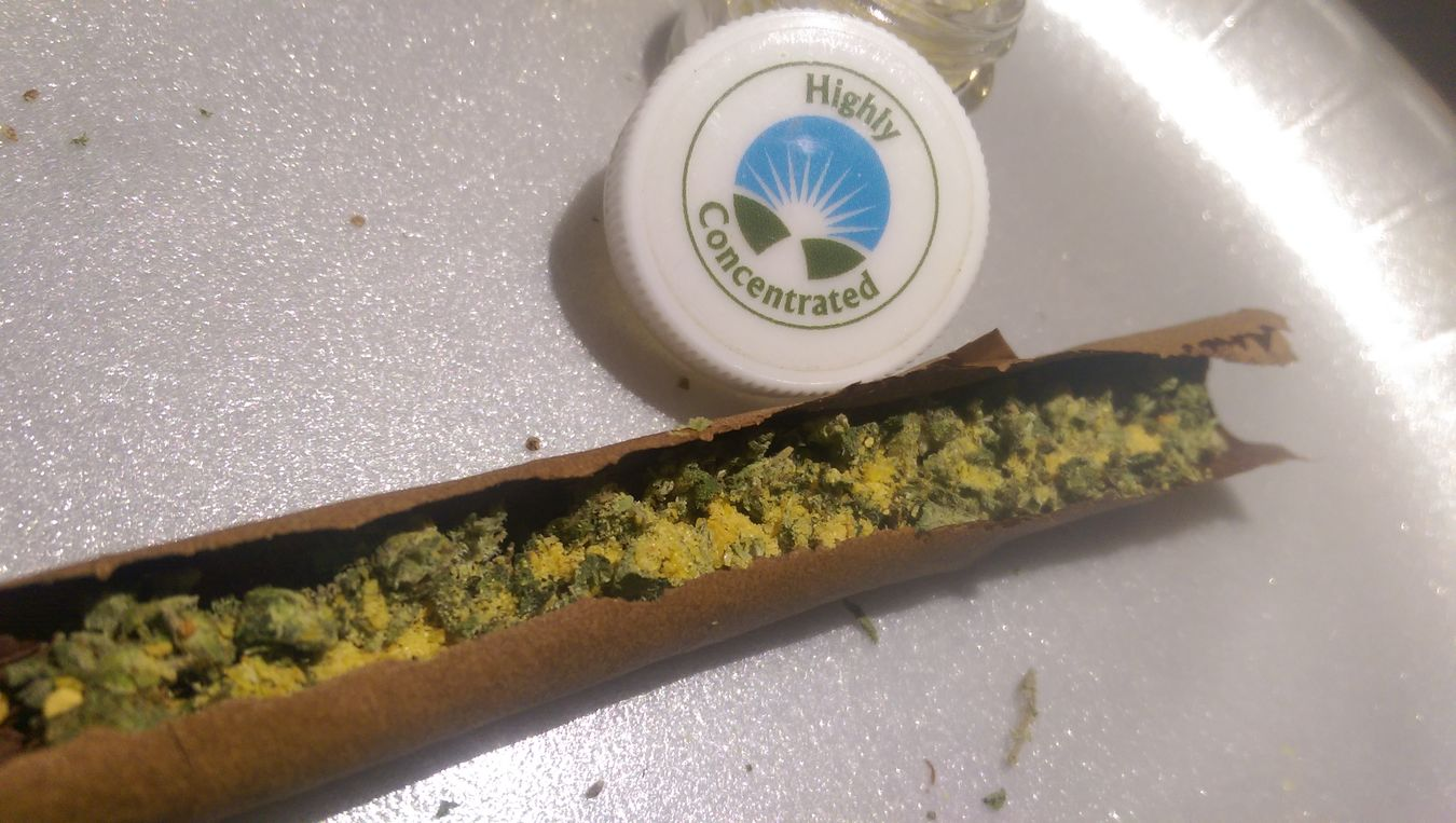 DMT Highly Concentrated 4:20 California Grown Tree Marijuana Hate IT or Join Me