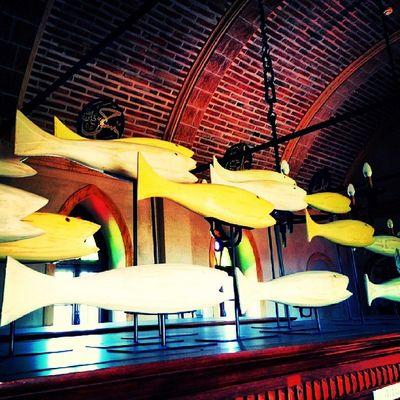 Fish Rahmikocmuseum Alibey Cunda