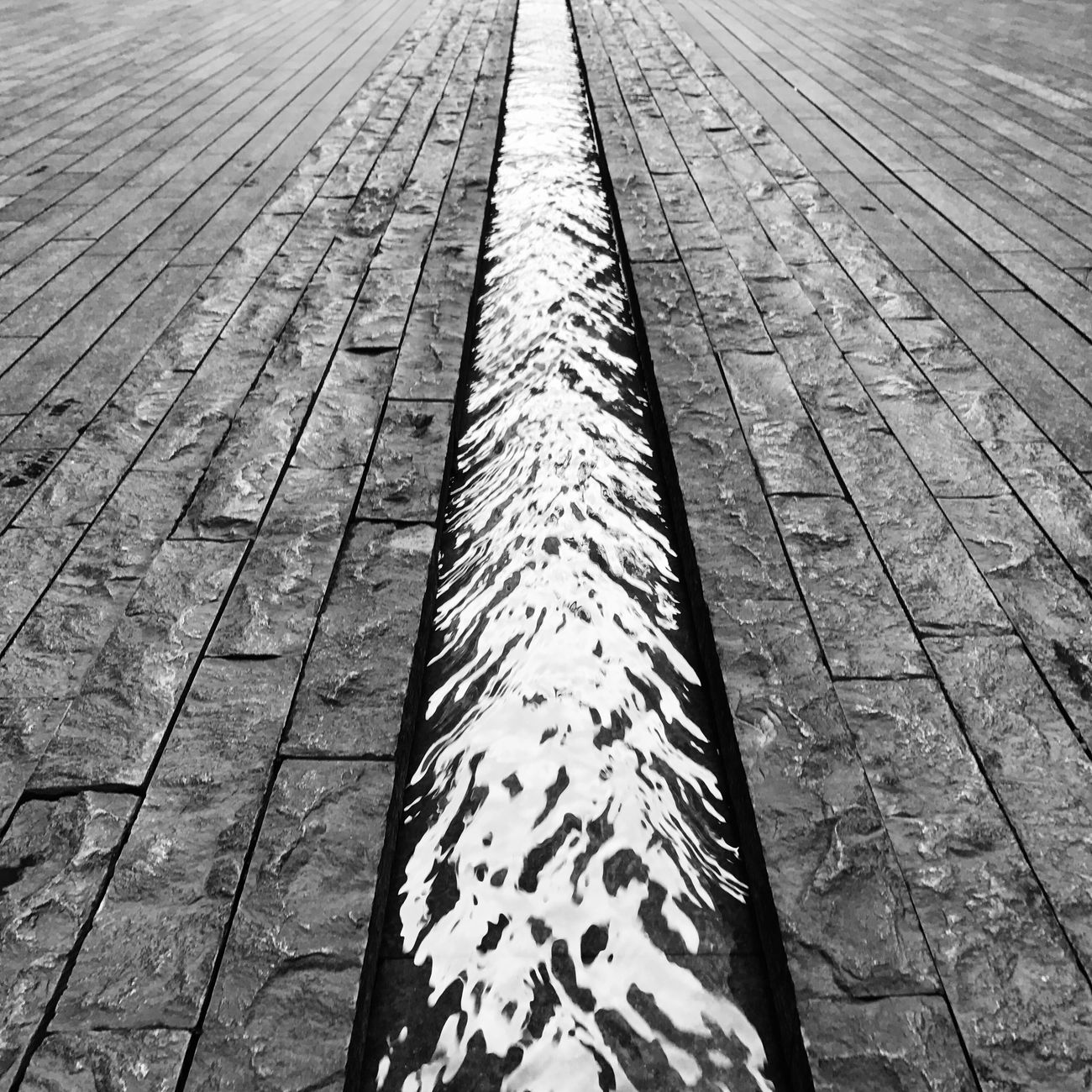Day Footpath Cobblestone No People Outdoors Close-up Nature Water Modern Urban City Urban Geometry Uk England Streetphotography Street Road London Urbanphotography Built Structure Architecture Morelondon