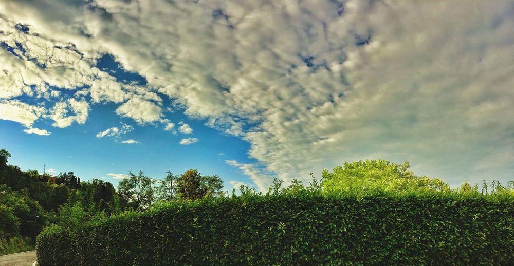 Turin Italy Sky