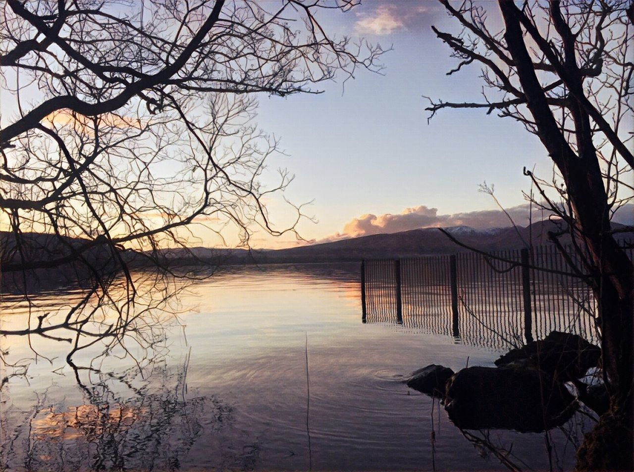 Nature On Your Doorstep Beauty In Nature Non-urban Scene Outdoor Life LochLomond Bare Tree Nature Landscape Water Sky Sunset Calm Outdoor Photography Naturelovers VisitScotland Lovelyview Prisma