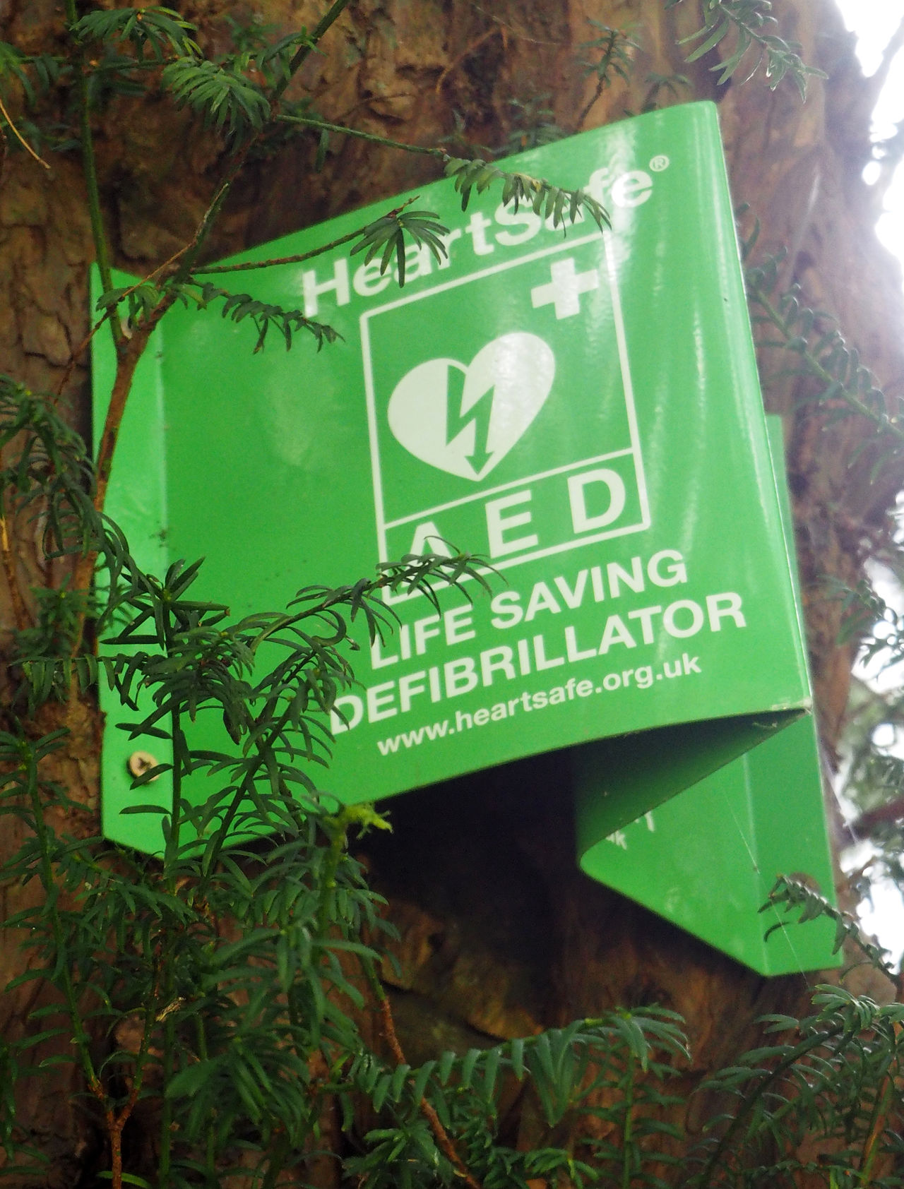 Defibrillator sign on tree Defibrillator Life Saving Sign West Wycombe Church Close-up Communication Day Green Color Green Sign Growth Leaf Nature No People Outdoors Plant Sign On Tree Text Tree