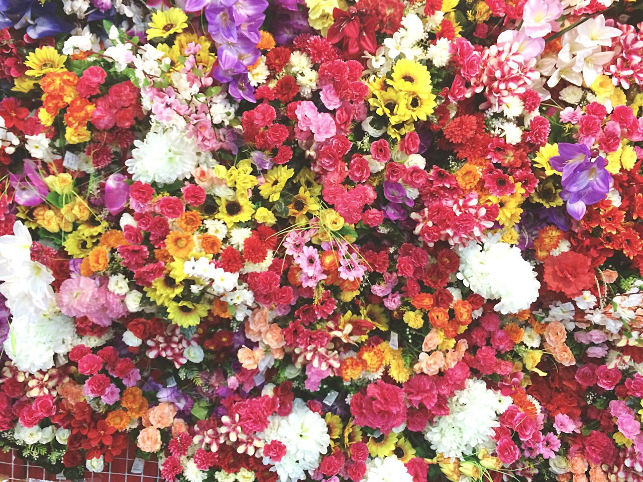 flower, fragility, variation, leaf, freshness, nature, multi colored, backgrounds, no people, abundance, growth, yellow, petal, beauty in nature, flower market, full frame, outdoors, close-up, day, blooming, flower head