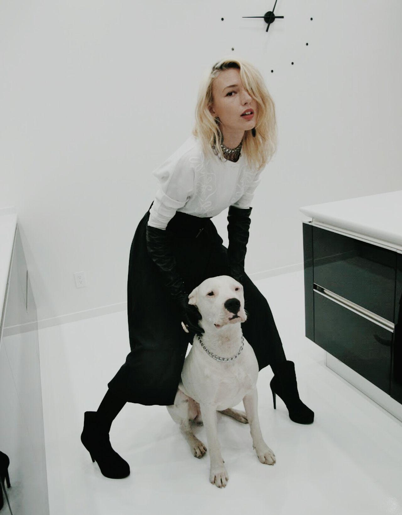 Beautiful stock photos of pitbull, Animal Themes, Blonde Hair, Blouse, Clock