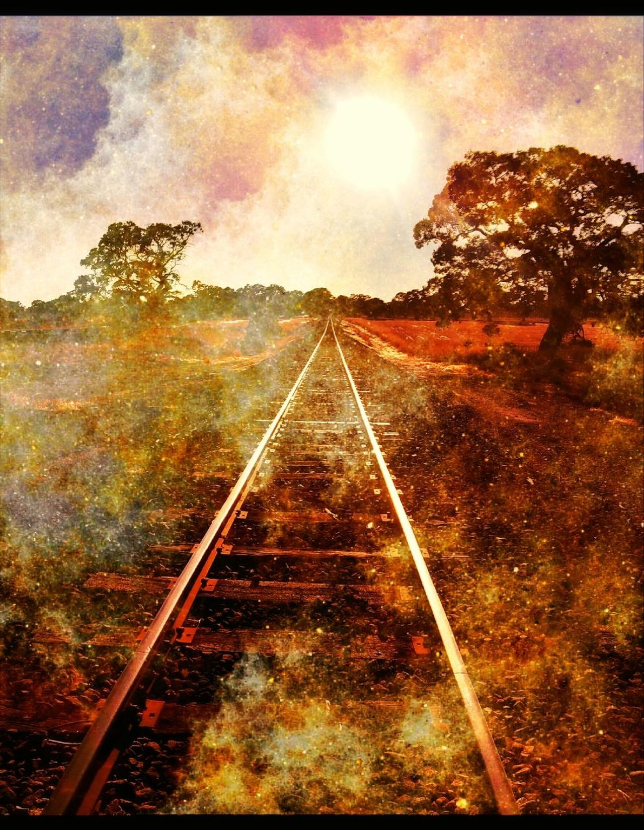 """▶ https://youtu.be/RW65T5SjFeA ...🚈🎧. ▶▶ https://youtu.be/B1eyZAedhY4 🎺 """"And there is the headlight shining far down the track, glinting off the steel rails that, like all parallel lines, will meet in infinity, which is after all where this train is going."""" (B.Catton) The Way Forward Double Exposure Break The Mold Exceptional Photographs Artistic Photography Artistic Expression Diminishing Perspective Parallel Lines Railroad Track Australian Landscape Landscape_Collection Lyricalartistry"""