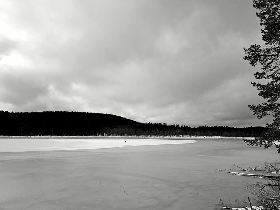 Landscape Beauty In Nature Scenics Nature Outdoors Sky Tree Winter Snow Black And White Monochrome Blackandwhite Ice Lake Miles Away Welcome To Black