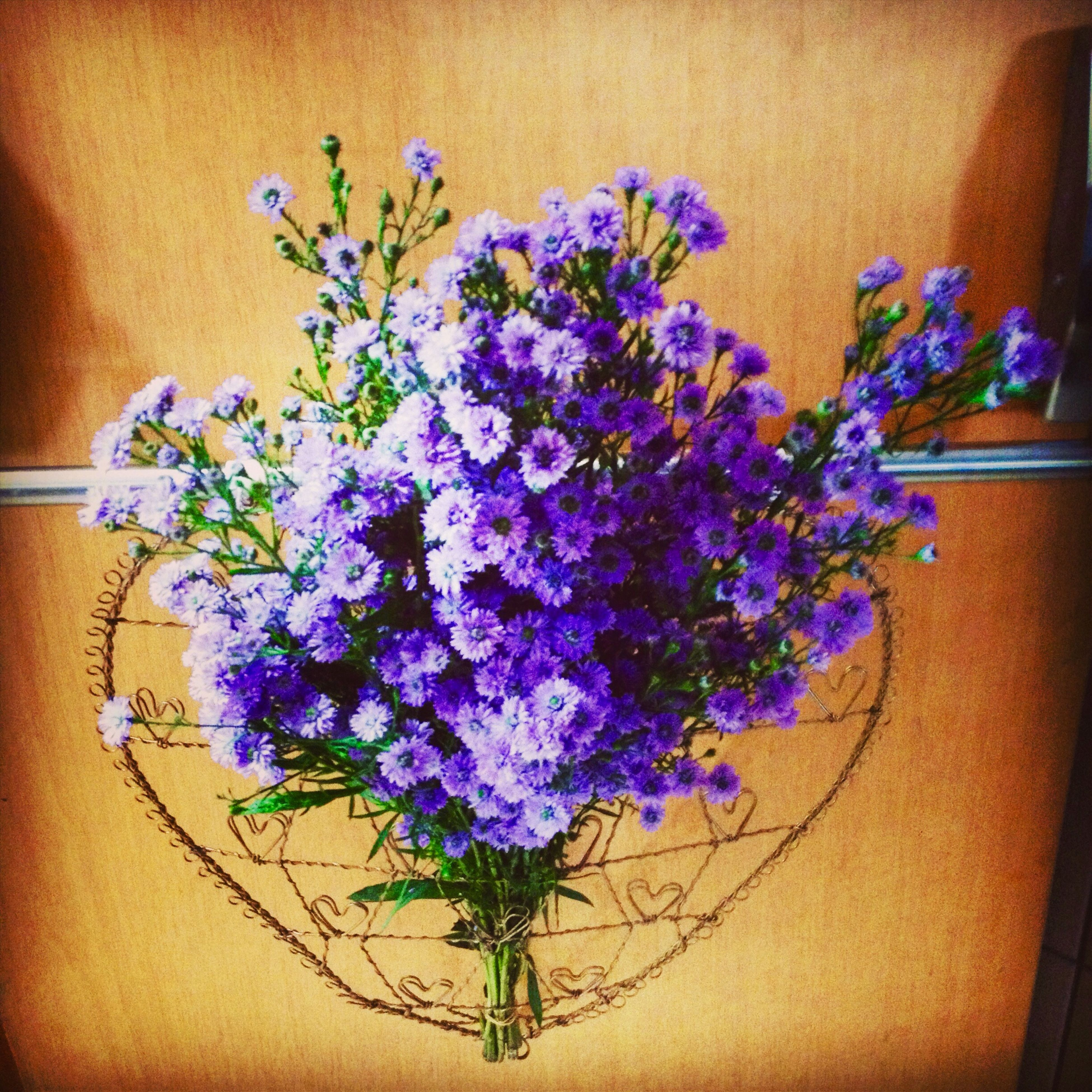 flower, freshness, fragility, petal, growth, indoors, plant, beauty in nature, bunch of flowers, vase, potted plant, flower head, nature, purple, stem, close-up, in bloom, blossom, decoration, wall - building feature