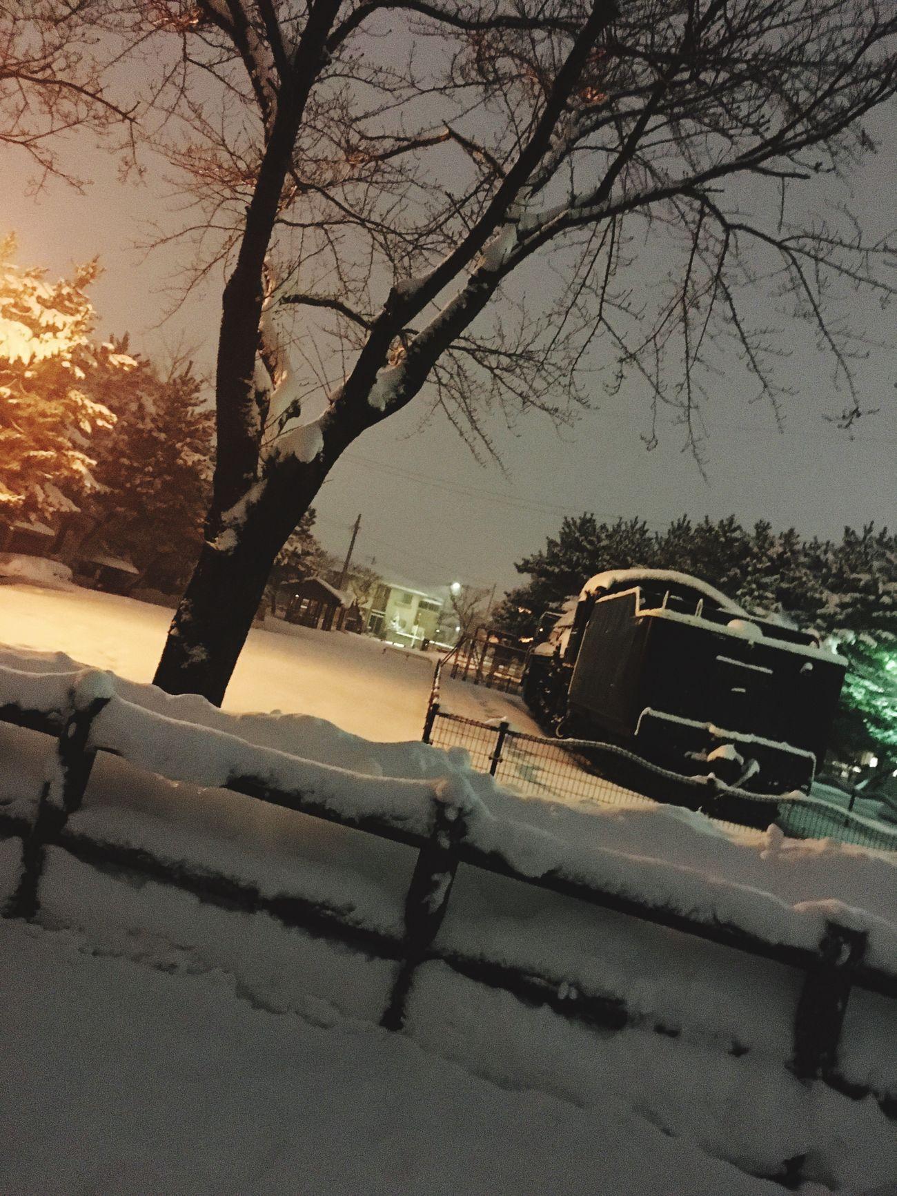 SL公園 in Akita Shi