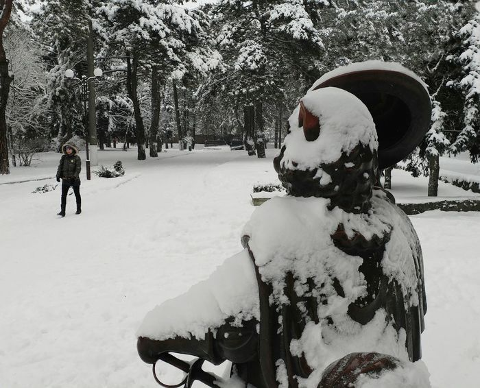 Winter Snow Cold Temperature Outdoors Tree Snowing Cat Wellcome Lady Park Sculpture Walk Walking Walkway Pine Tree Monument Citylife