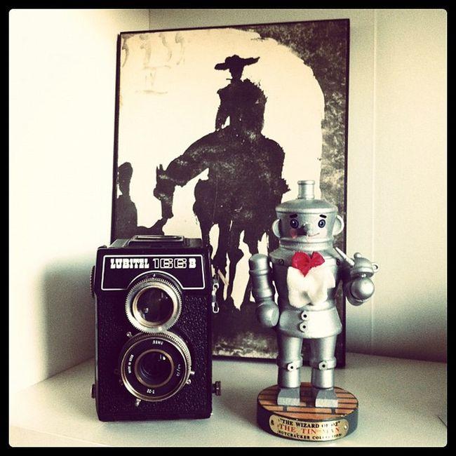 home Quixote Lubitel Oz