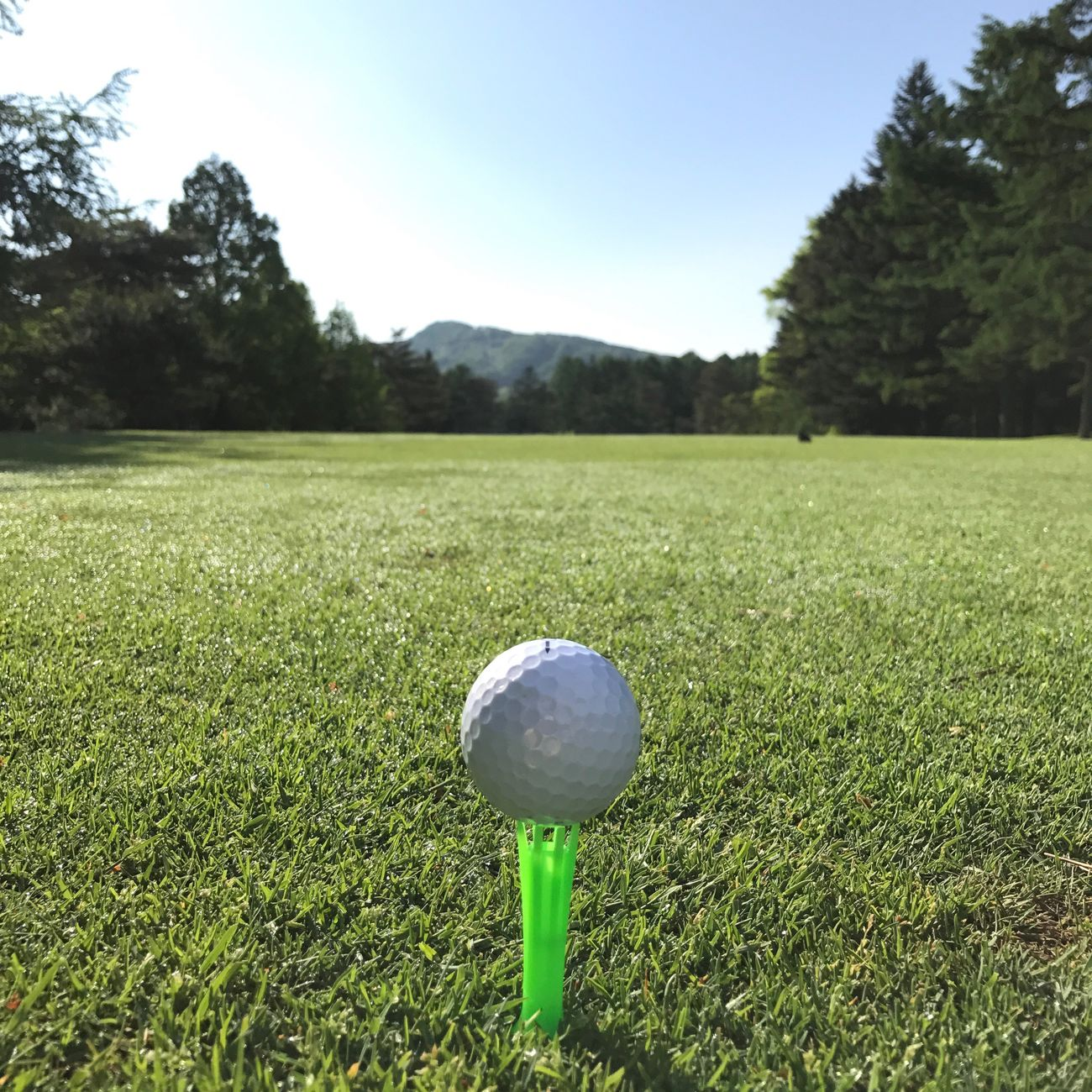 Golf Golf Course Grass Golf Ball Green Color No People Green - Golf Course Tee Clear Sky ゴルフ
