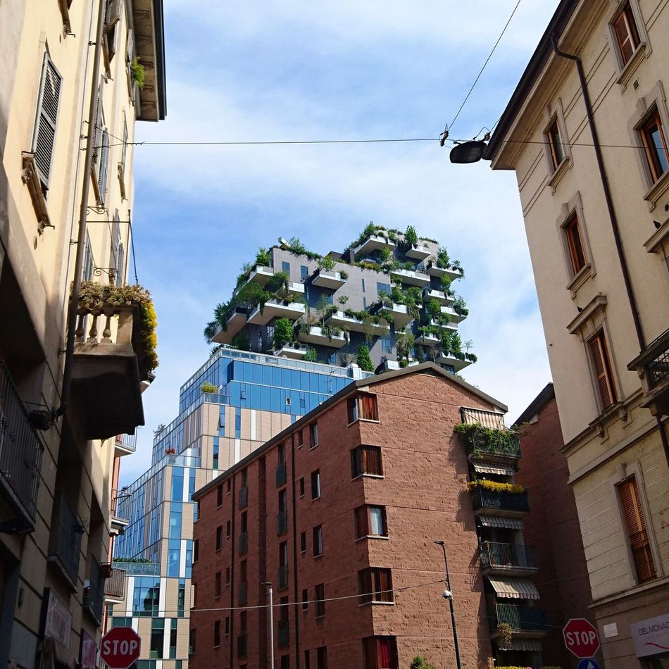 Old Meets New green meets bricks. Giardino Verticale Architecture City Cityscape Building Exterior Urban Skyline Outdoors Skyscraper Cityscape Downtown District Architecture City Life Milan Italy Green