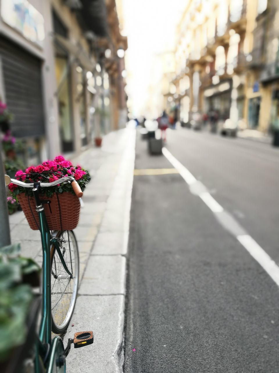 transportation, bicycle, land vehicle, mode of transport, flower, outdoors, street, bicycle basket, stationary, road, day, built structure, no people, building exterior, nature, architecture, close-up