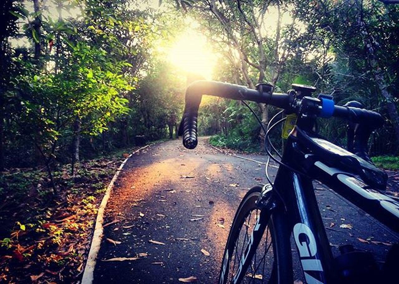 สวัสดีวันอาทิตย์ ปั่นเพื่อสุขภาพ วันนี้ปั่นบางน้ำผึ้ง สดชื่นนนนจักรยาน บางน้ำผึ้ง บางกระเจ้า Bicycle Morning